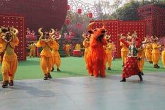 The dance ensemble Stock Images