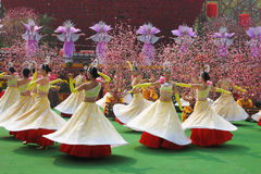 Dance group of girls at the concert Royalty Free Stock Image