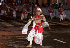 A Dance of Kothala performer parades through the streets of Kandy during the Esala Perahera in Sri Lanka. Royalty Free Stock Photos