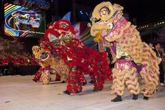 dance lion στοκ φωτογραφία με δικαίωμα ελεύθερης χρήσης