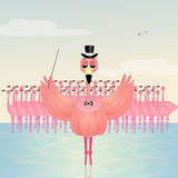 Dance love flamingos Royalty Free Stock Images