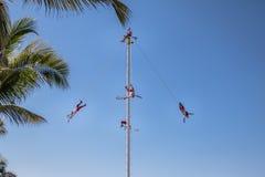 Dance of the Papantla Flyers Voladores de Papantla - Puerto Vallarta, Jalisco, Mexico Stock Photos