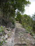 Dance trail,  Saba Royalty Free Stock Images