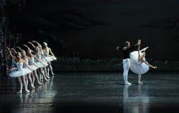 Dance trippingly -ballet Swan Lake Royalty Free Stock Image