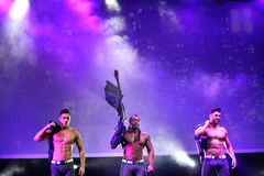 The dance troupe Chippendales performance Royalty Free Stock Photography