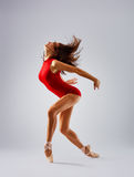 Dancer ballerina. Posing in studio Royalty Free Stock Photos