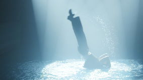 Dancer does a somersault in the water in a circle of light stock video footage