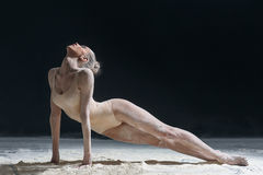 Dancer and flour Stock Photography