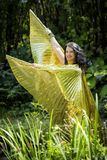 Dancer with golden Isis wings Stock Image