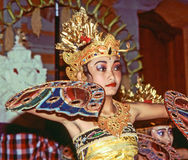 Dancer is performing an indonesian dance potpurri for tourists Stock Image