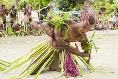 Dancer Solomon Island Royalty Free Stock Photo