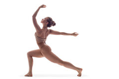 The dancer in studio. Young and beautiful modern style dancer posing royalty free stock photography