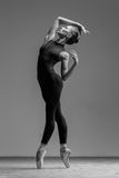 The dancer. Young beautiful dancer is posing in studio royalty free stock photos