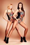 Dancers. Modern ballet dancers posing at studio Royalty Free Stock Image