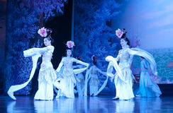 Dancers of the China Dance Troupe Stock Photography