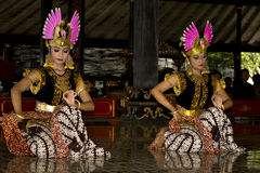 Dancers in Indonesia. Traditional dancers in Yogyakarta, Indonesia stock images