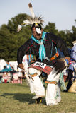 Dances with Wolves Stock Photo