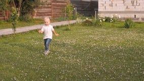 Dancing adorabile del ragazzo del bambino su un prato di estate all'aperto Bambino che cammina su Sunny Summer Day stock footage