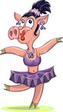 Dancing ballerina pig Stock Photo