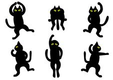 Dancing black cats Stock Images