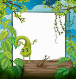 A dancing chameleon and a white board Royalty Free Stock Images