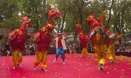 Dancing chicken Stock Photos
