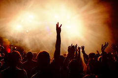 Dancing crowd at music festival. Royalty Free Stock Photography