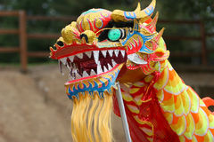 Dancing Dragon stock images