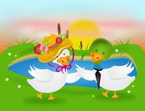 Dancing ducks Stock Photography
