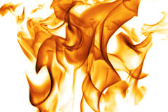 Dancing flames. Against a white background Stock Image