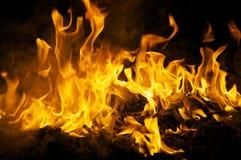 Dancing flames at night Royalty Free Stock Photos