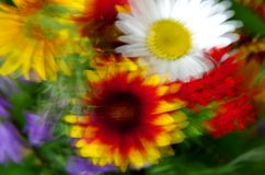 Dancing flowers (Fall colors). This is an impressionist style abstract  fall colors and dancing flowers Royalty Free Stock Image