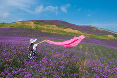A Dancing Girl in Lavender Field Royalty Free Stock Images