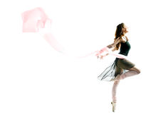 Dancing gracefully Stock Images