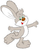 Dancing Hare Royalty Free Stock Photos