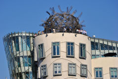 Dancing House in Prague Royalty Free Stock Photography