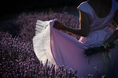 Dancing in Lavender Field Stock Image