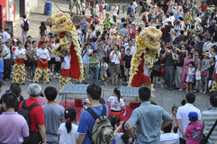 The dancing lion. Chinese traditional performing - dancing lion Stock Images