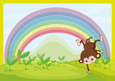 A dancing monkey and a rainbow Royalty Free Stock Photo