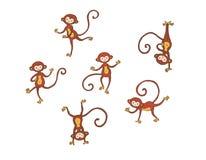 Dancing monkeys Stock Images