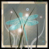 Dancing moon dragonfly. Dragon fly dancing in the grass with moon Stock Photos