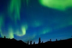 Dancing northern lights spruce taiga Yukon Canada Stock Photos