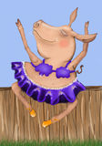 Dancing pig Stock Photo