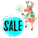 Dancing pig with sparklers New Year Sale stock photography