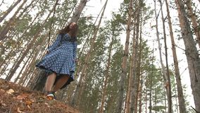 Dancing in the pine forest. 2 Shots. stock video