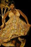 Dancing Queen Stock Afbeeldingen
