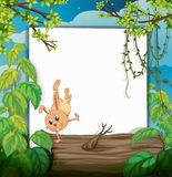 A dancing rabbit Royalty Free Stock Images