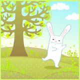 Dancing rabbit on a meadow Stock Photography