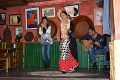 Andalusian girls dance and sing flamenco, the typical traditional music of southern Spain,Seville,04/15/2017. Dancing and singing Flamenco in a bar in Sevilla royalty free stock images