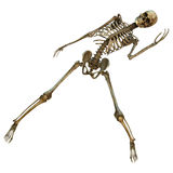 Dancing Skeleton Stock Photo